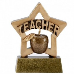 Mini Star Teacher