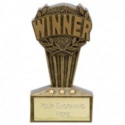 MICRO Winner