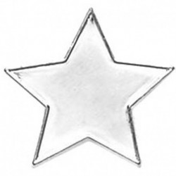 Badge20 Flat Star Silver