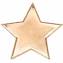 Badge20 Flat Star Bronze