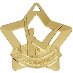 Mini Star Attendance Medal