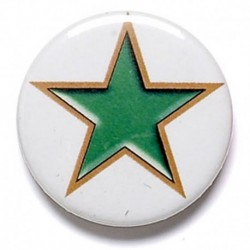 Green Star Button Badge
