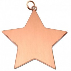 Star Achievement54 Medal