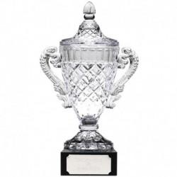 Merit Cup9