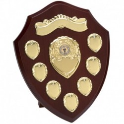 Triumph10 Gold Annual Shield