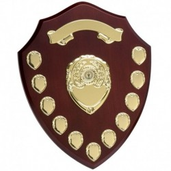 Triumph14 Gold Annual Shield