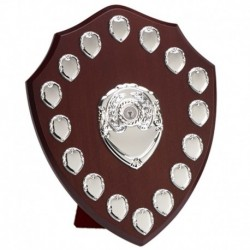 Triumph14 Silver Annual Shield