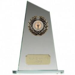 Peak8 Jade Award